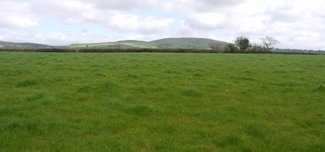 SALE AGREED – Land Near Mary Tavy