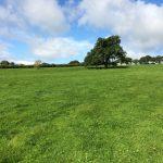 Pasture Land 6.06 acres For Sale