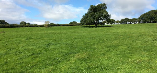 SOLD Land at Cheriton Bishop – 6.06 acres