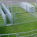 Sheep Handling System Grant